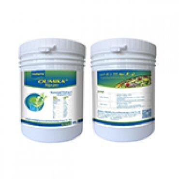Seaweed Fertilizer Solid